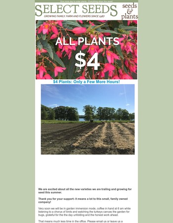Cute plants need good homes! $4.00 plant sale ends Monday June 12