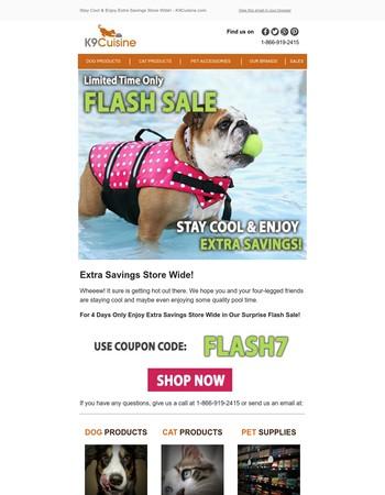 Enjoy These Extra Savings Today! - K9Cuisine.com