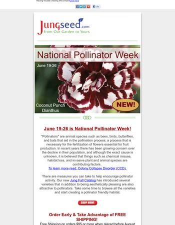 National Pollinator Week!