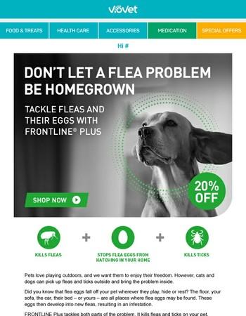 Don't let a flea problem be homegrown