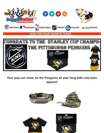 Celebrate the Penguins with great gear for your pup!