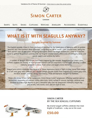 What Is It With Seagulls Anyway?