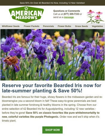 Save 50% On Bearded Iris For Late-Summer Planting