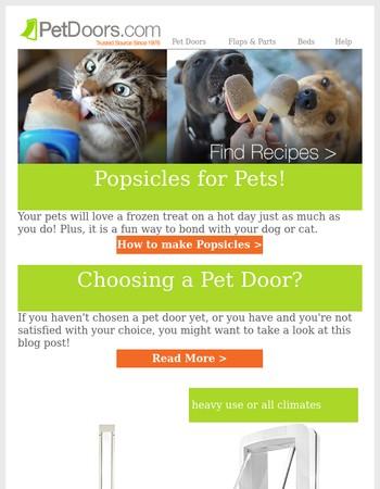 DIY Popsicles for Pets!
