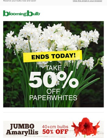Last Day - Paperwhite Sale - Save 50% Today