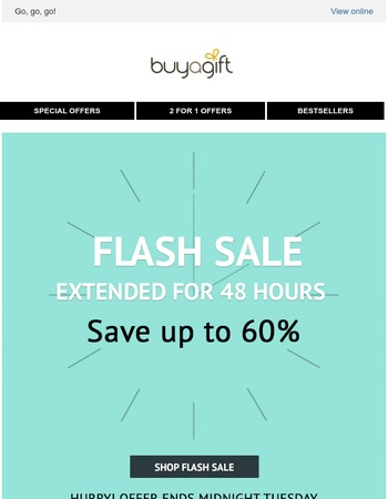 Flash sale EXTENDED for 48 hours!