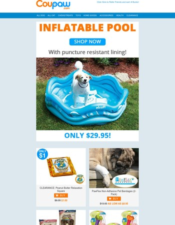 SUMMER SPECIAL | Inflatable Dog Pool