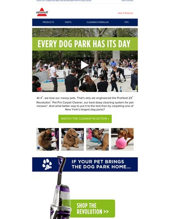 We Carpeted a Dog Park in New York City!