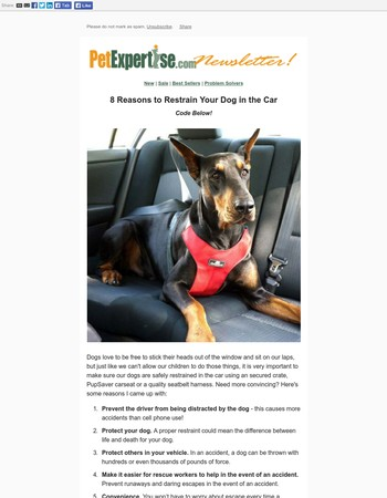 8 Reasons to Restrain Your Dog in the Car. Code Inside!