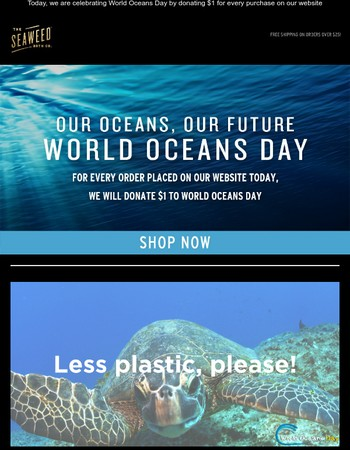 Celebrate World Oceans Day: We Will Donate $1 for Every Purchase on our Website Today