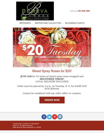 $20 Tuesday: 10 Mixed Spray Roses Delivered For $20
