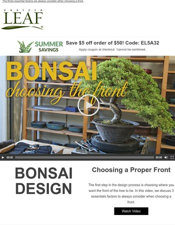 Video: Bonsai Design - Choosing the Front + Save $5 off $50