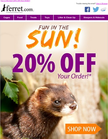 Fuzzy in the Sun! 20% Off Today