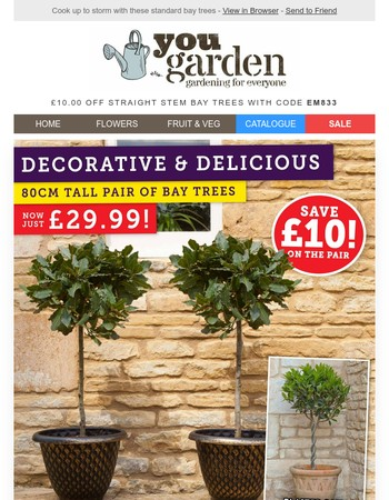 Save £10 On Bay Trees