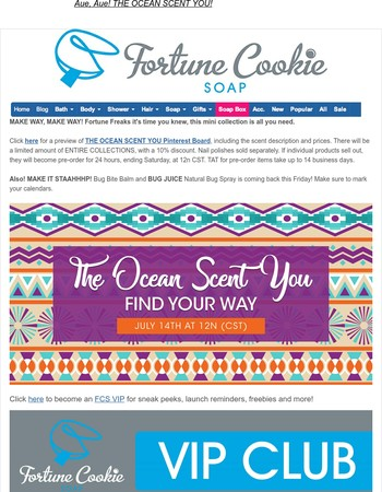 Fortune cookie soap party favors Newsletter