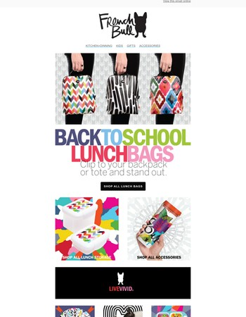 Stylish Slim Lunch Bags
