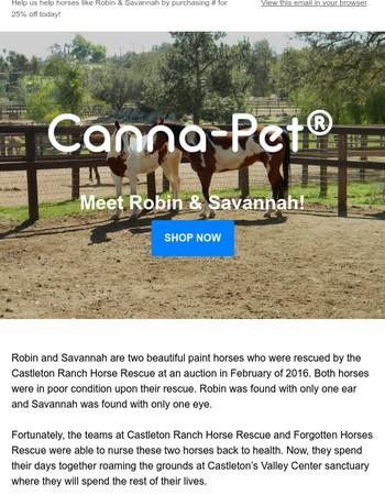 Meet Robin & Savannah!