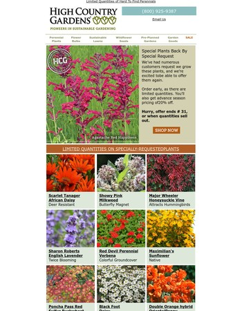 Special Plants Back By Special Request – Limited Quantities
