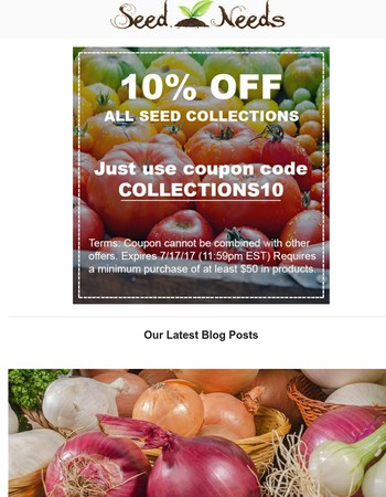 10% OFF All Collections!