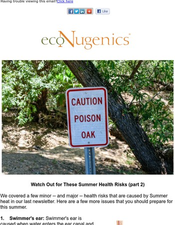 Watch Out for These Summer Health Risks