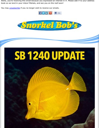 SB 1240 Reef Recovery Update