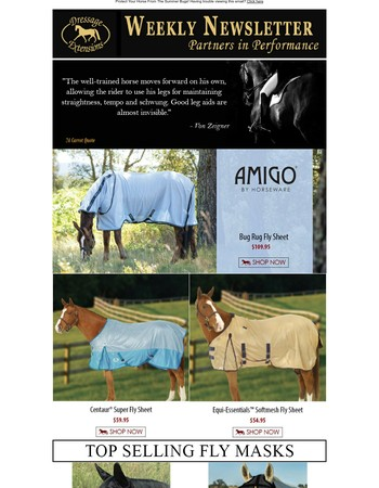 Protect Your Horse From The Summer Bugs!