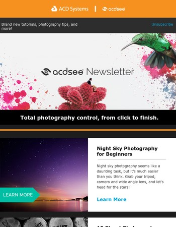 July Newsletter | Brand new tutorials, photography tips, and more!