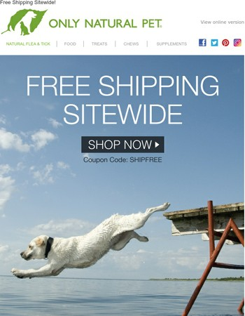 Stock Up ❯❯ FREE SHIPPING Sitewide!