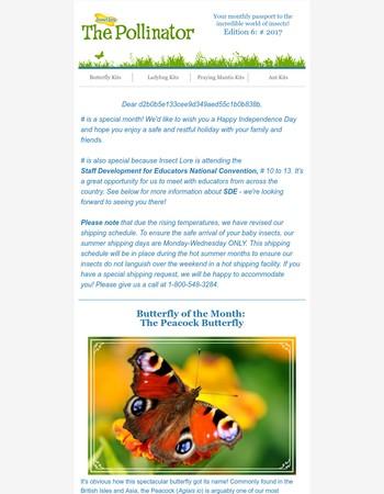 The Pollinator - July 2017