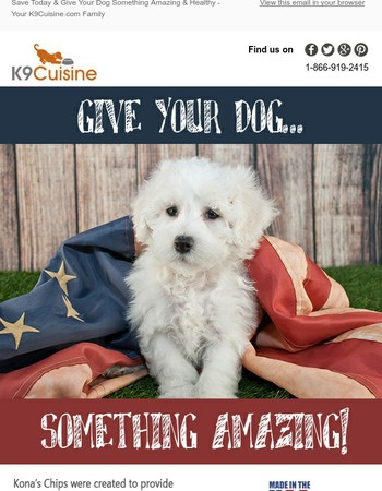 Save 10% on One of Our Favorites! - K9Cuisine.com