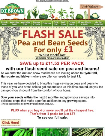FLASH SEED SALE! Up to 77% OFF