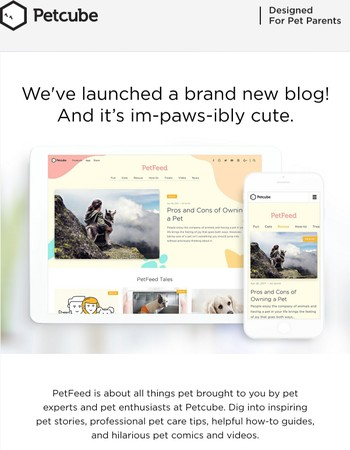 Woof! Petcube Blog Has A New Look!