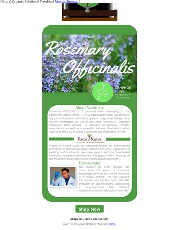 About: Rosemary Officinalis