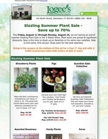 Sizzling Summer Plant Sale - Save up to 70%