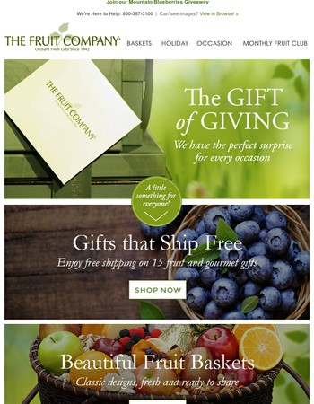 The Gift of Giving - Send the Perfect Surprise for Every Occasion