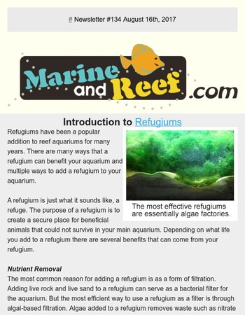 MarineAndReef.com -- Introduction to Refugiums