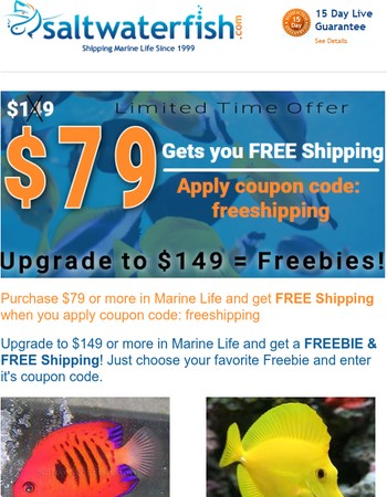 $79 Gets you FREE Shipping. UPGRADE = FREEBIES! Bonus Over 40% OFF Price Reduction...