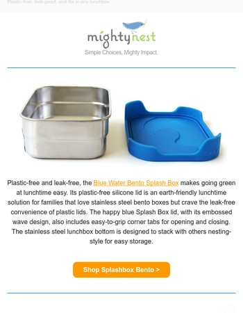 Our favorite plastic-free food container to pack leftovers for lunch