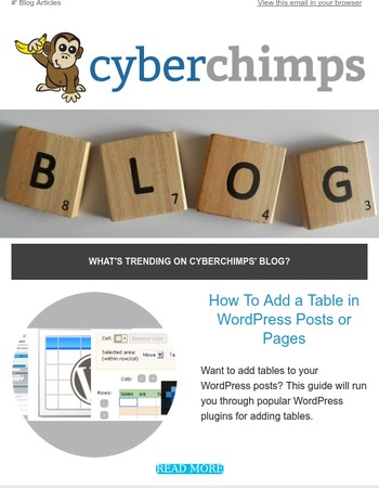 Here's what's trending on CyberChimps' Blog...