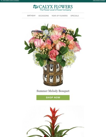 1 800 Flowers Ca Coupons