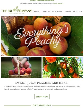Everything's Peachy! The Fruit Company Newsletter