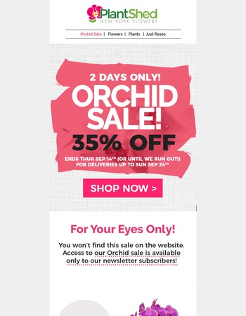 Orchid Super Sale 35% Off - Not Visible on the Website