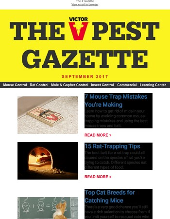 Your September Newsletter