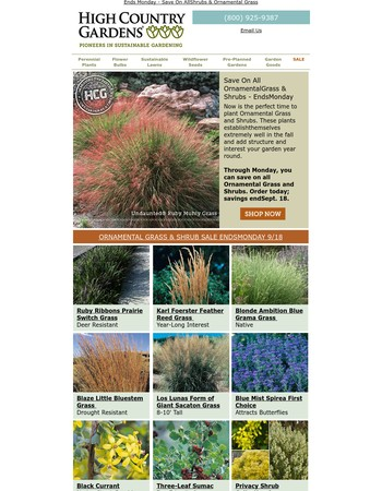 Last Chance To Save On Ornamental Grass & Shrubs - Ends Monday