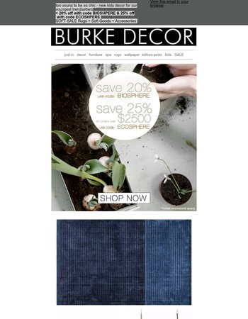 Burke Decor Newsletter