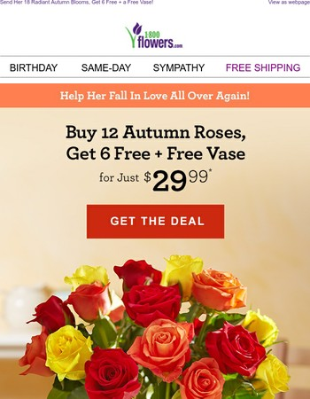 You'll Never Go Wrong With Roses!