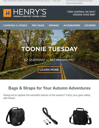 Camera Bags & Straps for Your Autumn Adventures