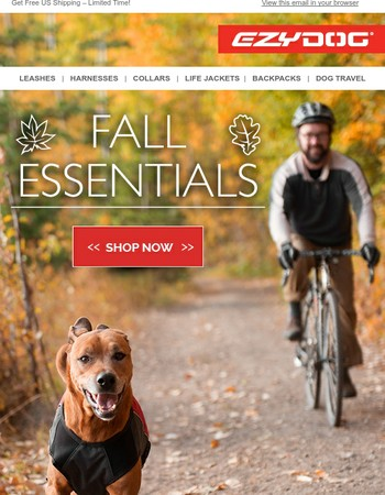 Top 3 Gear Essentials from EzyDog's Fall Collection