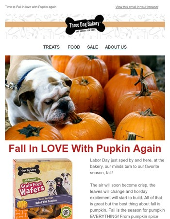 Fall in LOVE with Pupkin